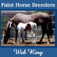 Paint Horse Breeders Web Ring